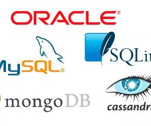 Administradores de base de datos
