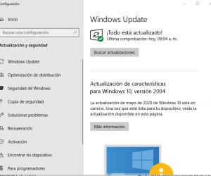 Microsoft Reconoce varios errores después de las actualizaciones de Windows 10